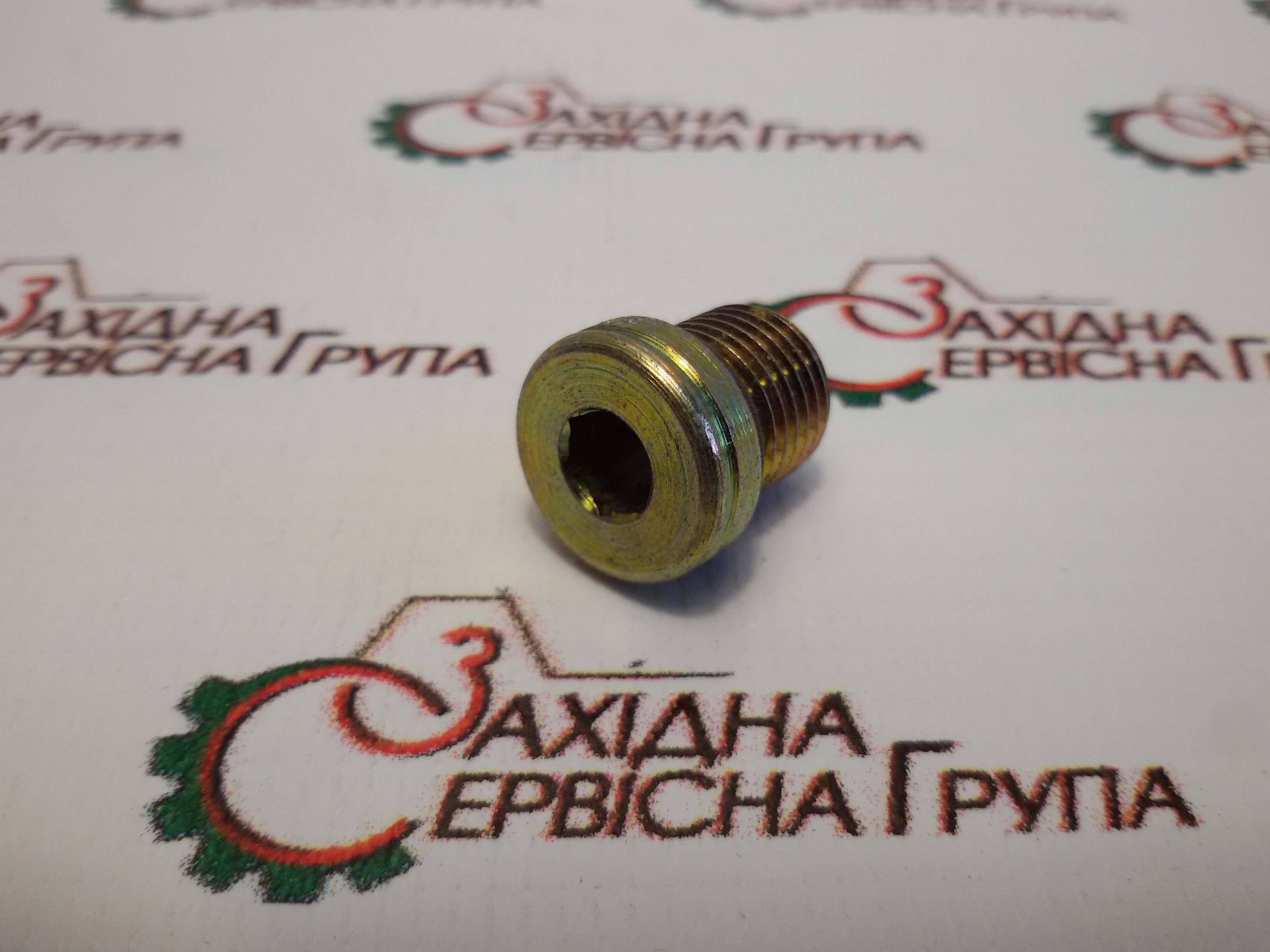 Заглушка різьбова Cummins ISX15, QSX15, 4002056.