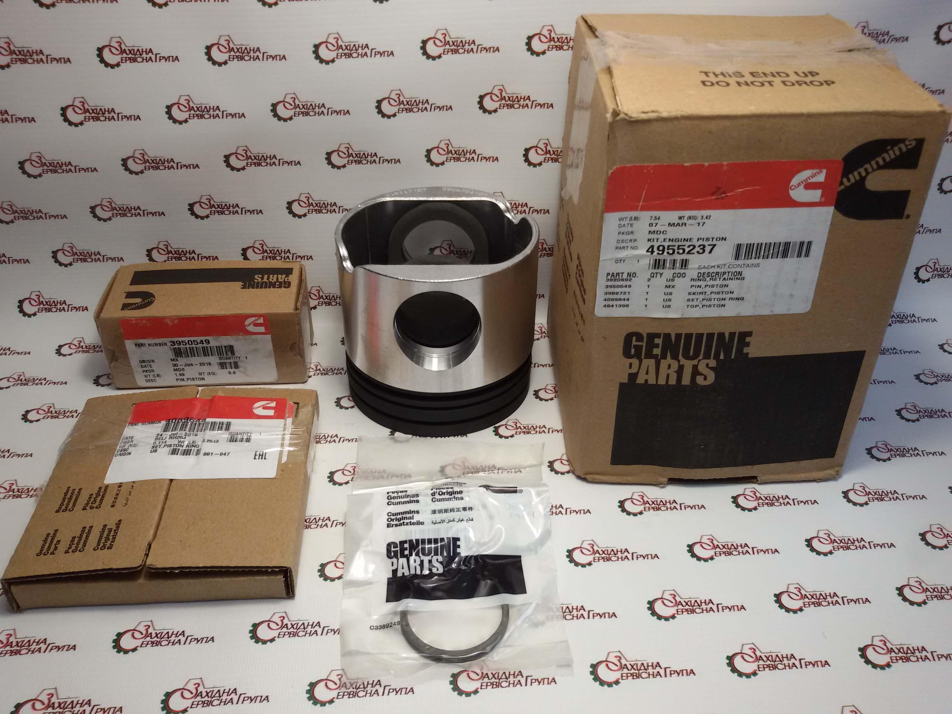 Комплект поршня двигуна Cummins QSL9, 4955237, 4941396, 4940794, 4934266.